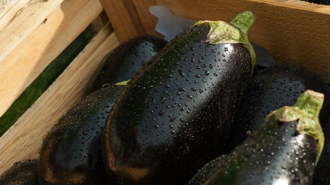 eggplant-1707629_1920